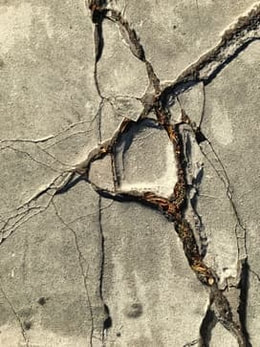 A shot of cracked sidewalk with vegetation growing underneath of it.